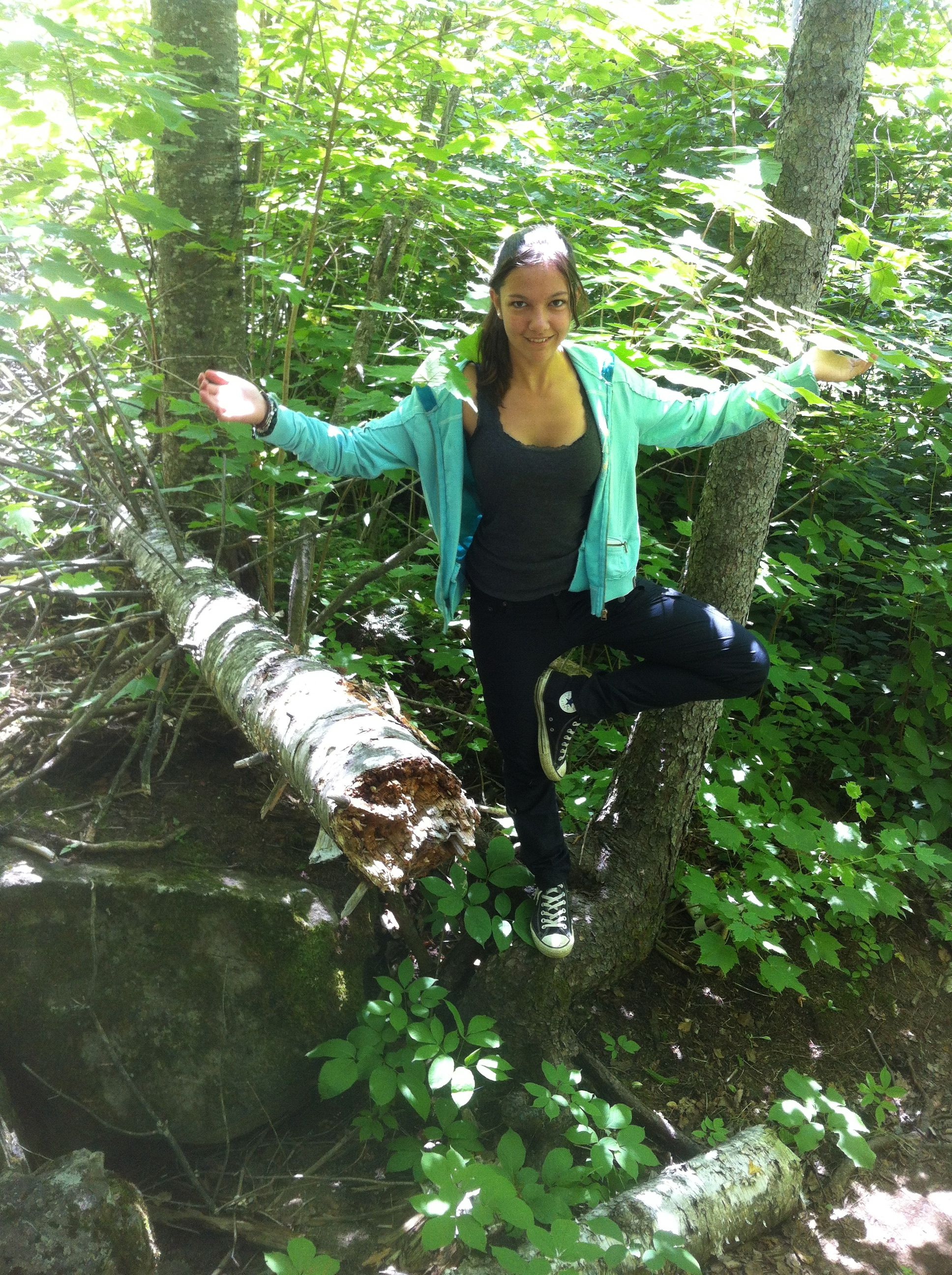 2013 Palisades of the Pijitawabik-Kia tree pose on a tree